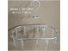 Aluminum Laundry Hanger w/ 10 Clear Polycarbonate Pins