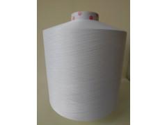 Polyester yarn & Nylon yarn