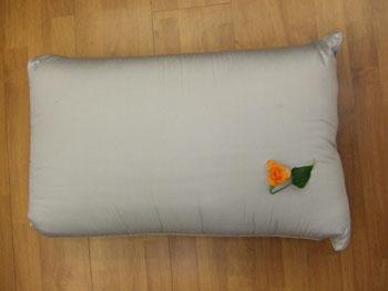 BC Health Pillow
